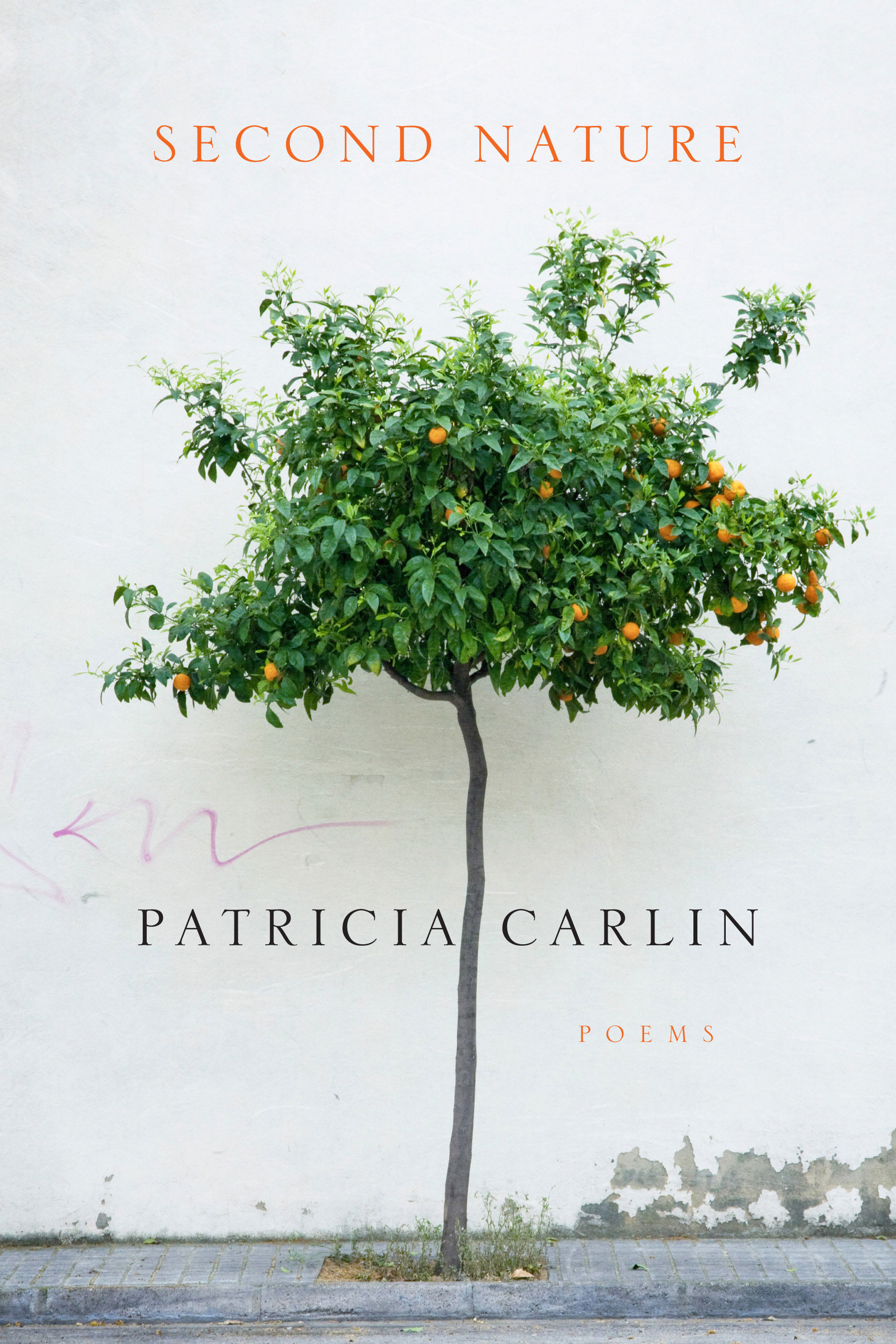 Second Nature by Patricia Carlin