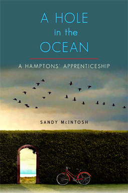 Hole in the Ocean by Sandy McIntosh